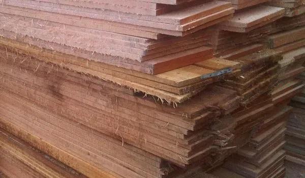 kayu randu